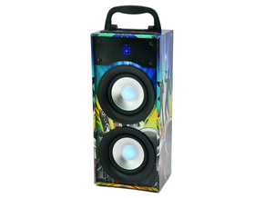 Party Light & Sound PARTY-DISCO2 actieve bluetooth speaker 20W
